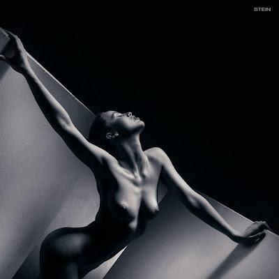 Modelos Desnudas Fotos Artisticas Blanco Negro
