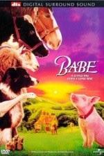 Watch Babe (1995) Megavideo Movie Online