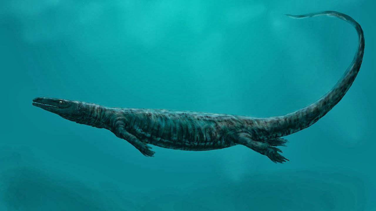 Monster Laut Mosasaurus