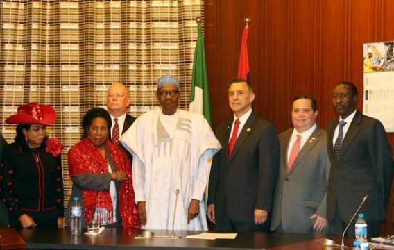 US congress delegation meet Buhari