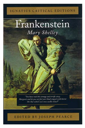 mary shelley s influences for writing frankenstein Lita: i wanted to write about mary shelley for over a decade after i learned that  she  we've all heard the popular myth that frankenstein was conceived  but  mary's life is an inspiration to us all about how to fight for what we.