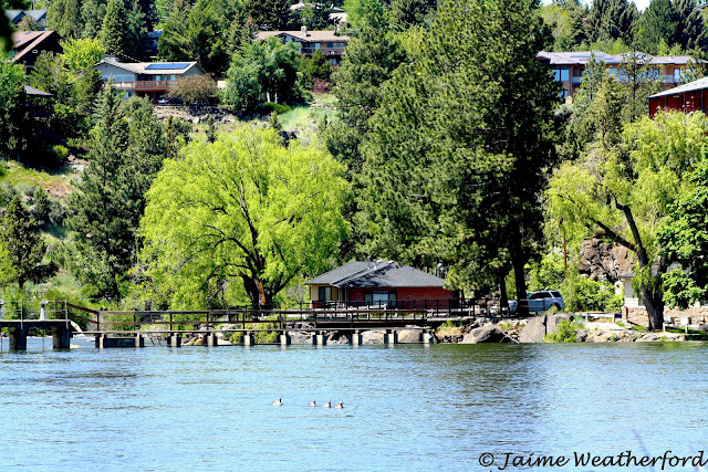 Pioneer Park Summer Bend Oregon