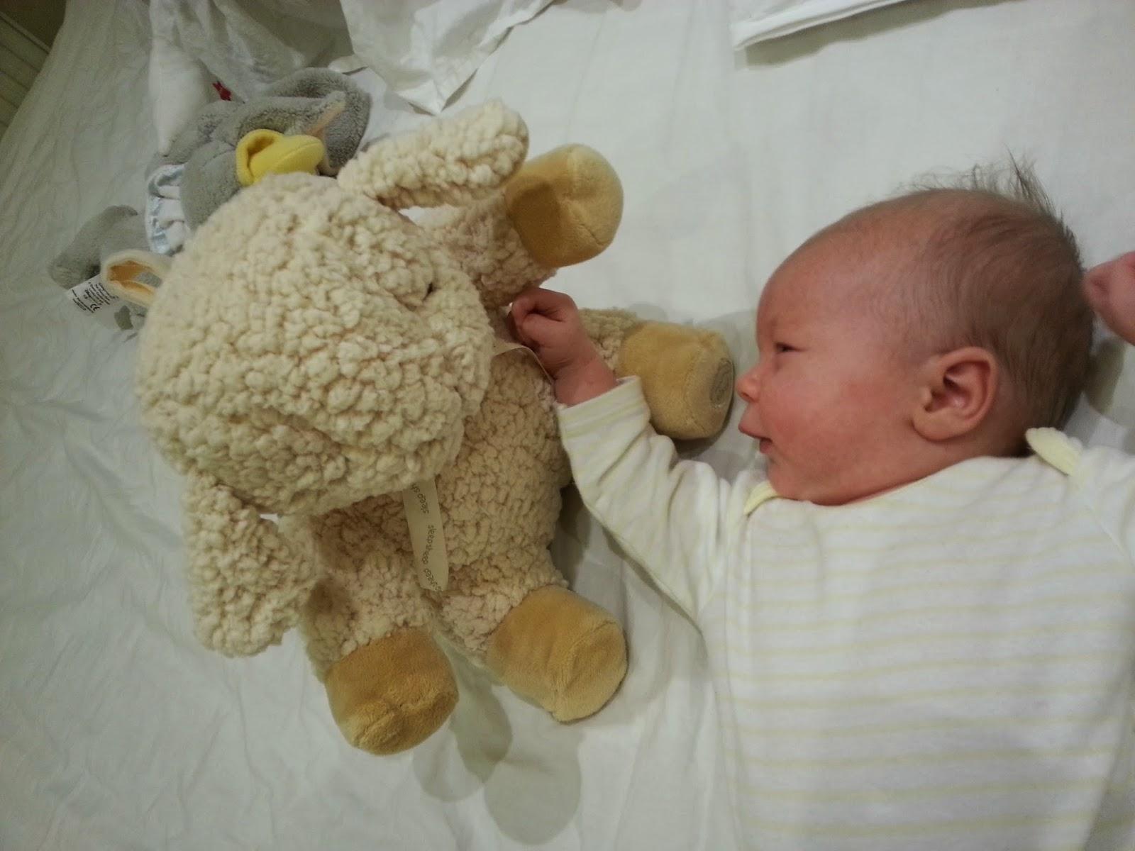 http://cloudb.com/UK/sound/sleep-sheep