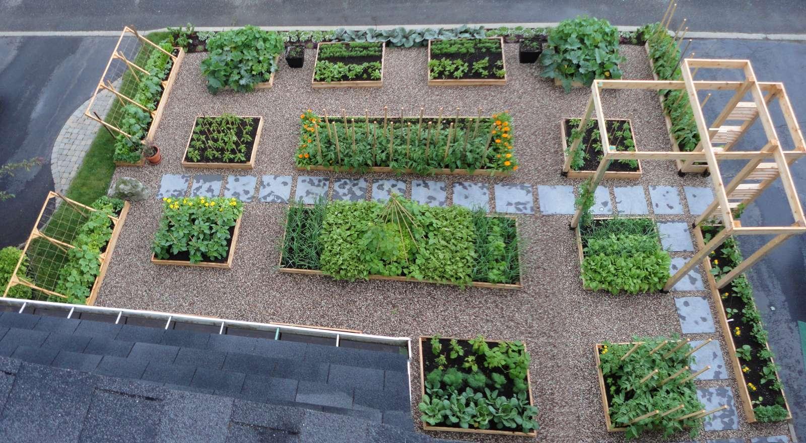 le potager urbain nos premiers contacts avec le monde de l 39 agriculture urbaine. Black Bedroom Furniture Sets. Home Design Ideas
