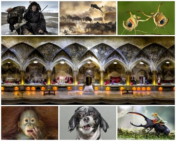 Expectaculares fotografias finalistas del 2014 Sony World Fhotography