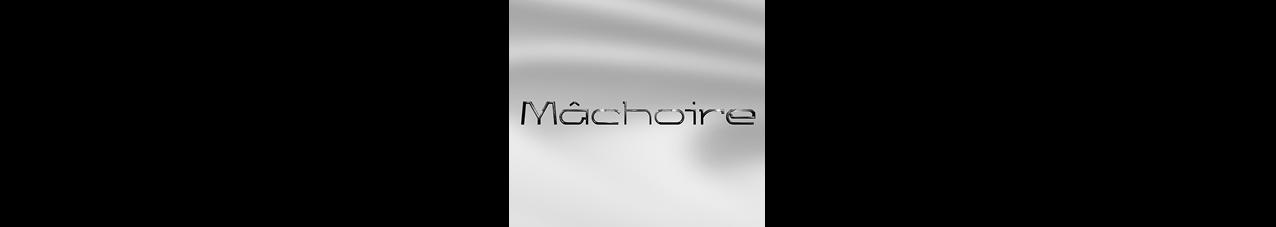 Mâchoire