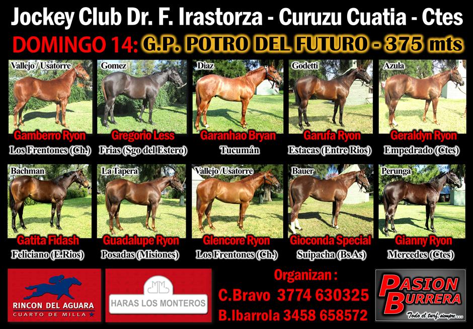 CURUZU CUATIA - POTRO DEL FUTURO - 400