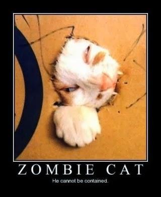Humor halloween Humor-animal-terrorifico20
