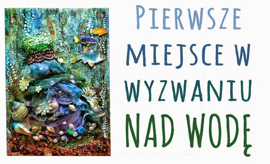 http://fifi-rifi.blogspot.com/2014/07/wyniki-wyzwania-nad-wode.html#more