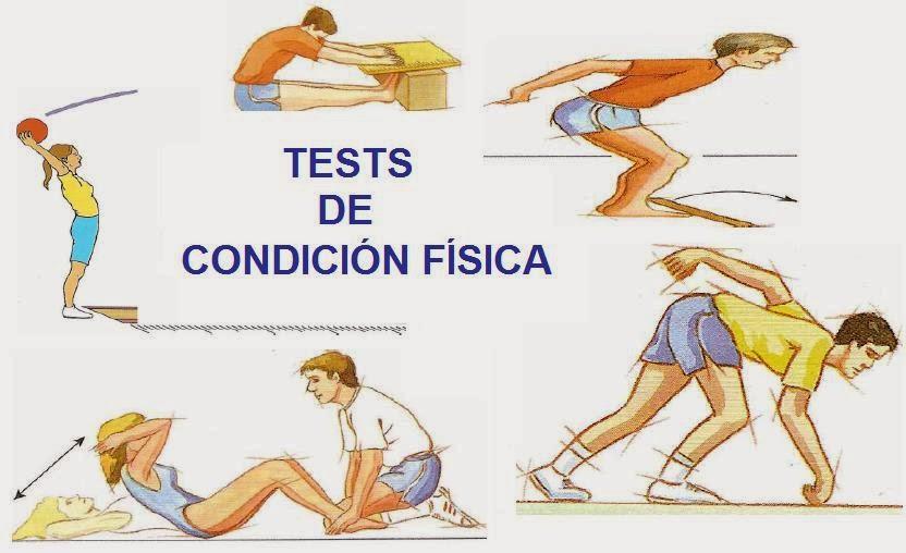 BAREMOS TESTS C.F.