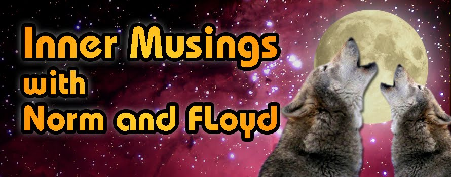 Inner Musings with Norm and Floyd
