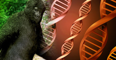 Derek Randles Wants His Bigfoot DNA Back