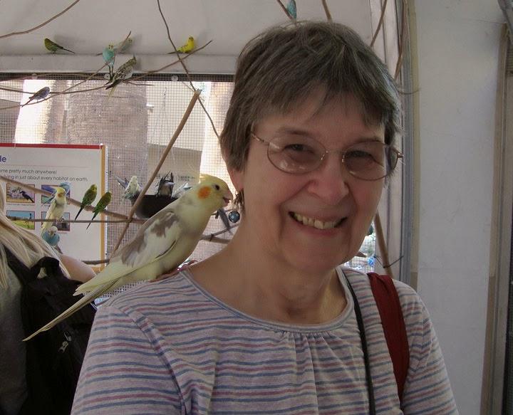 bird feeding Australian Outback exhibit at Living Desert Zoo, Palm Desert, CA
