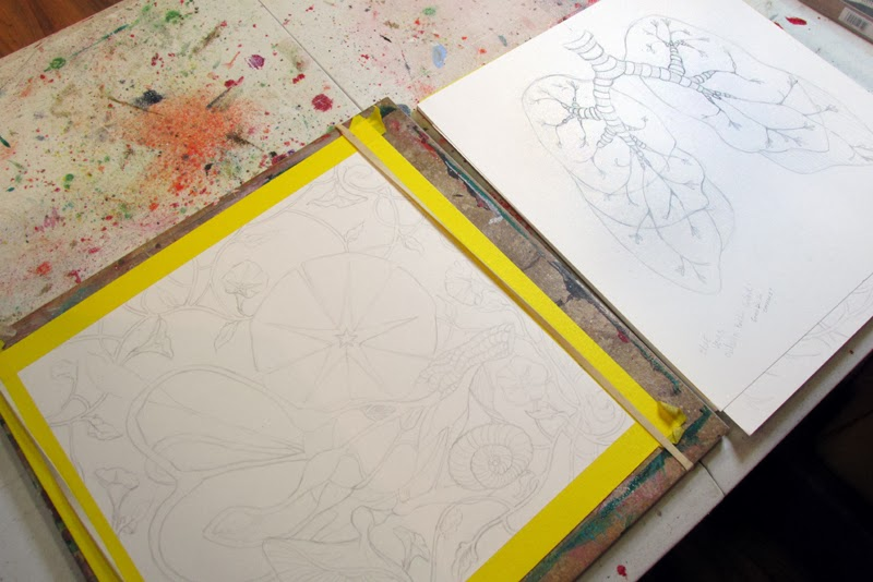 ©2014 Lauren T Kistner, Eardrum and lungs illustrations