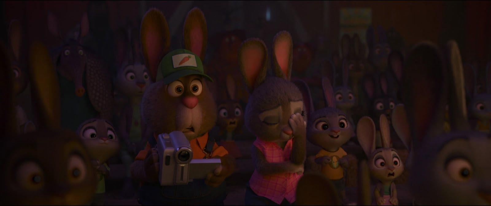 FreezeFrame #1- Rabbit Reactions! - Zootopia News Network