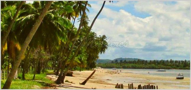 Litoral Sul de Pernambuco, Praia de Tamandaré