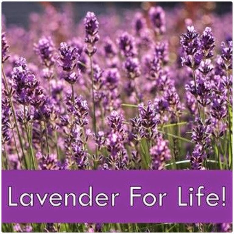 Lavender Mummy