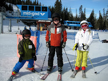Snowbird Skiing 2013