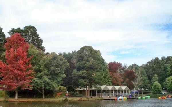 El Atelier de Clarisa - Abril: otoño, animales y novedades