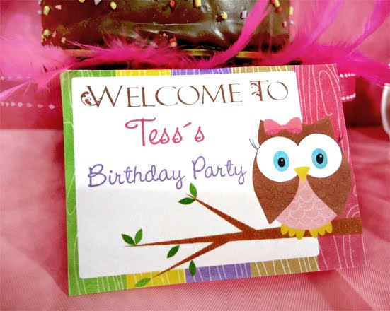 Owl Girls Birthday Party Package