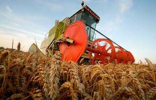 Argentina will bring a rich grain harvest in 2012/13 