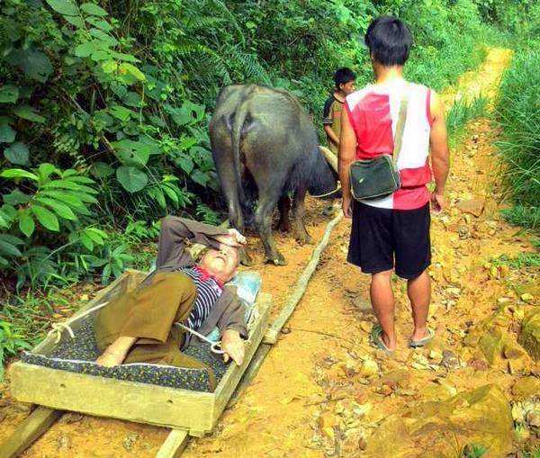 PKR terkejut penduduk Sabah guna ambulan kerbau ke hospital
