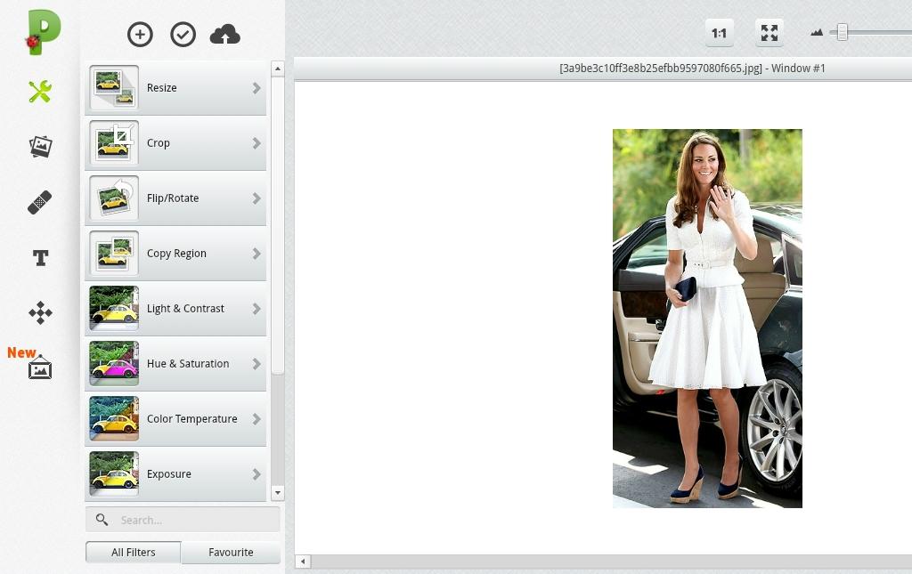saturation', 'color temperature', dan 'exposure' dalam sebuah foto