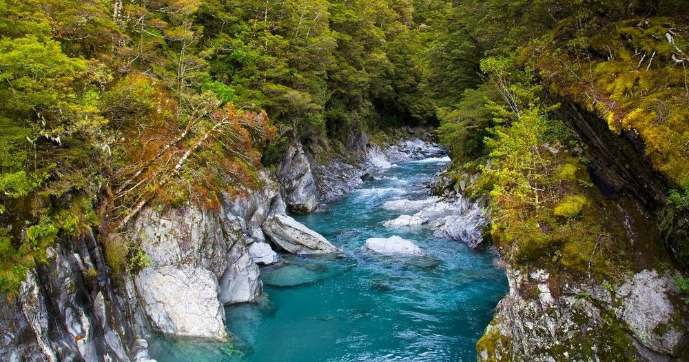 """Los 10 mejores """"roadtrips"""" para el verano de Nueva Zelanda"""