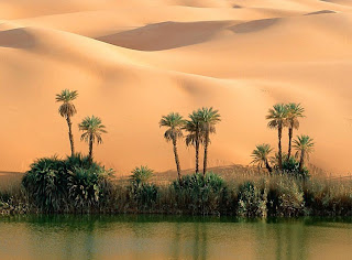 pictures lake in the desert