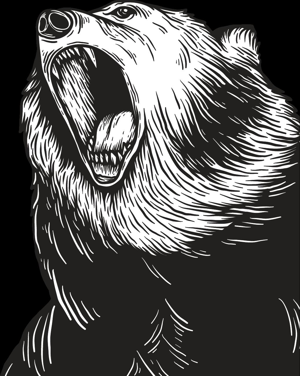 Beruang Viral