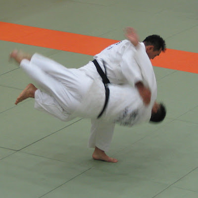 8 judo 10 of the Worlds Well Known Martial Arts