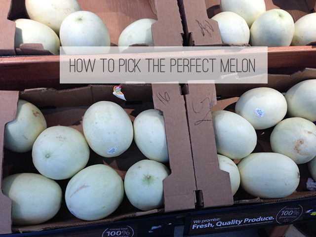 Everyday Simple | Picking the Perfect Melon
