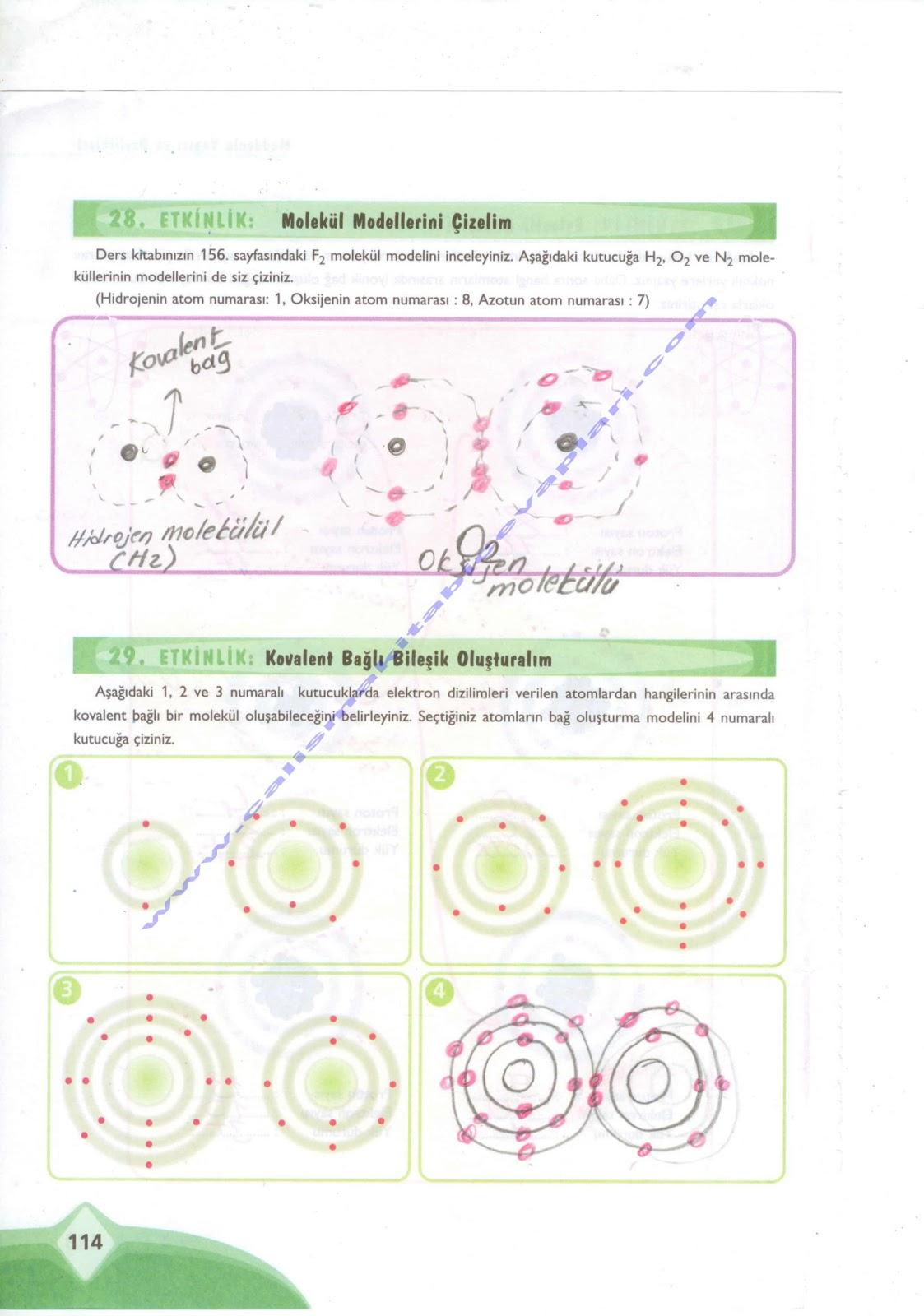 Sınıfekoyay yayınları fen ve teknoloji çalışma kitabı 114