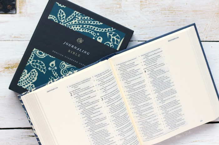 ESV Journaling Bible Review & Giveaway from PitterandGlink.com