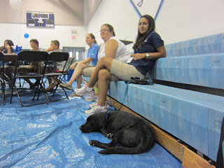 Chaperones relax on the bleachers as Coach naps at their feet.