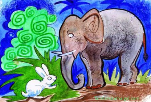 rabbit and elephant