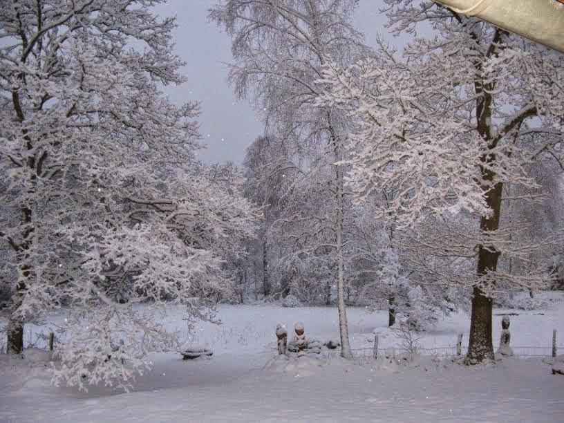 Ack, nu är det vinter!