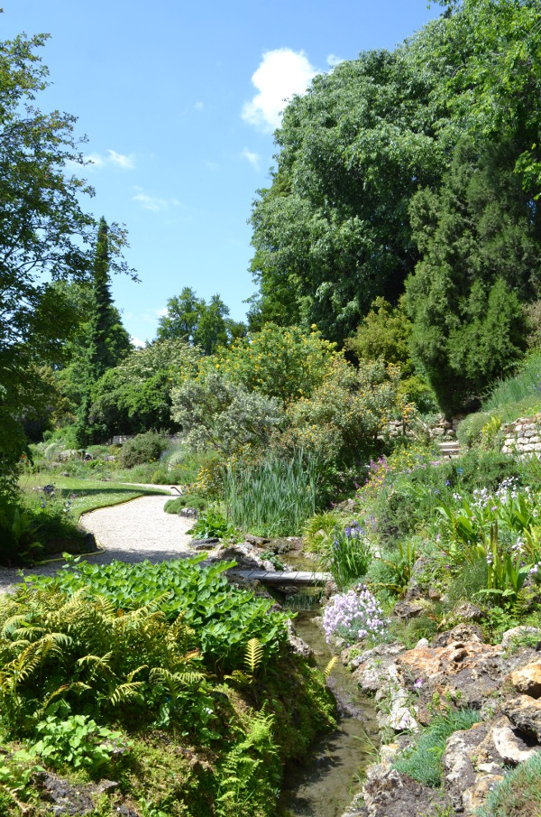 Art et glam la visite du jardin alpin au jardin des for Plante au jardin