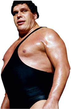 andre the giant - photo #4