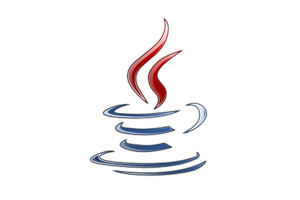 Java Programming, JavaScript, Java for Web