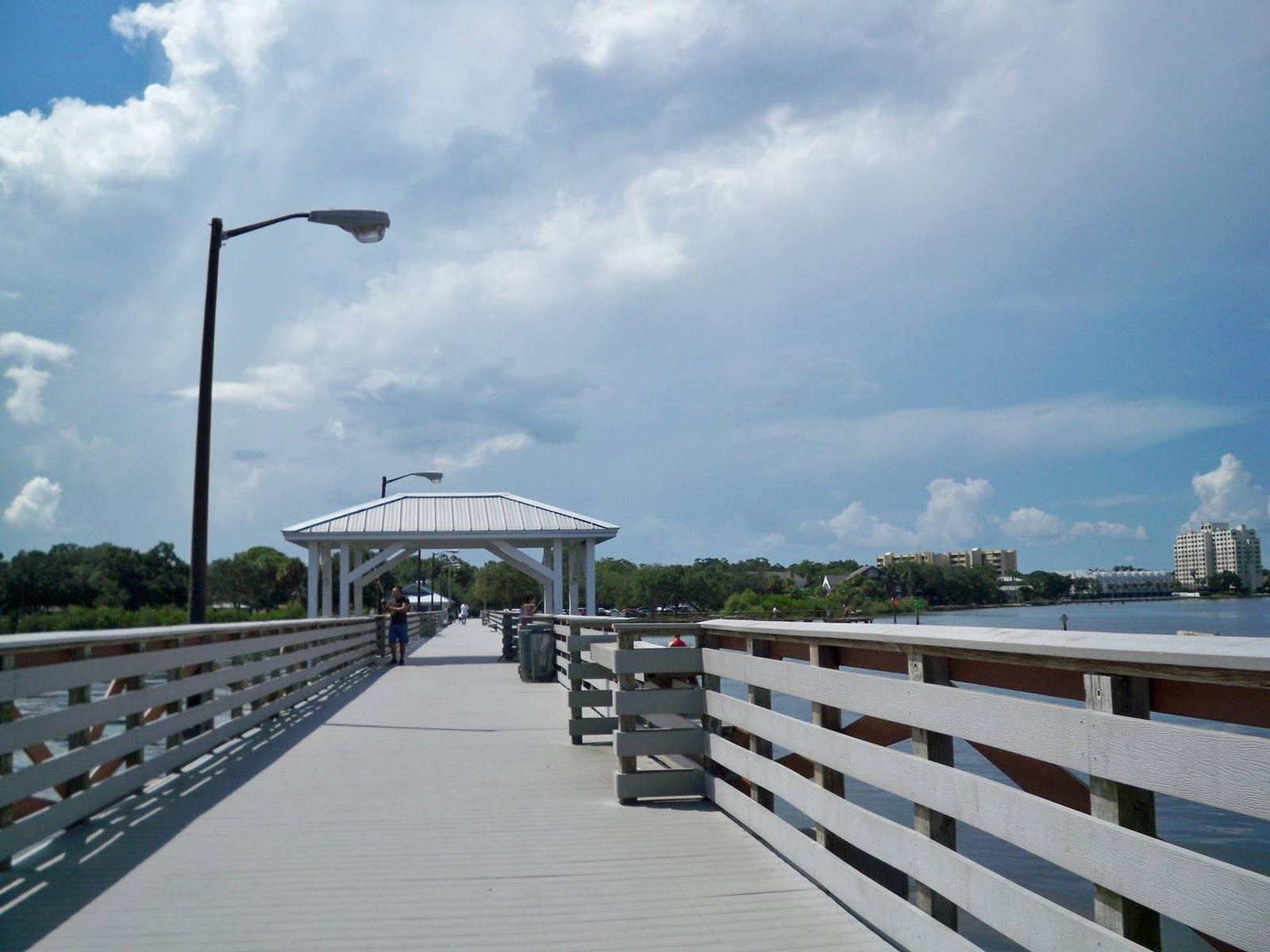 My florida paradise ballast point park tampa florida for Tampa fishing piers