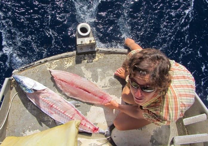 Der Fisch wird zerlegt
