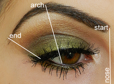 Allbeautybrands step by step eyebrow filling tutorial heres the classic diagram of where your brows should ideally start arch and end since we all have different face shapes natural brow shapes etc ccuart Choice Image