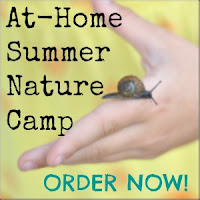 http://anaturalnester.blogspot.com/p/at-home-summer-nature-camp-ecurriculum.html