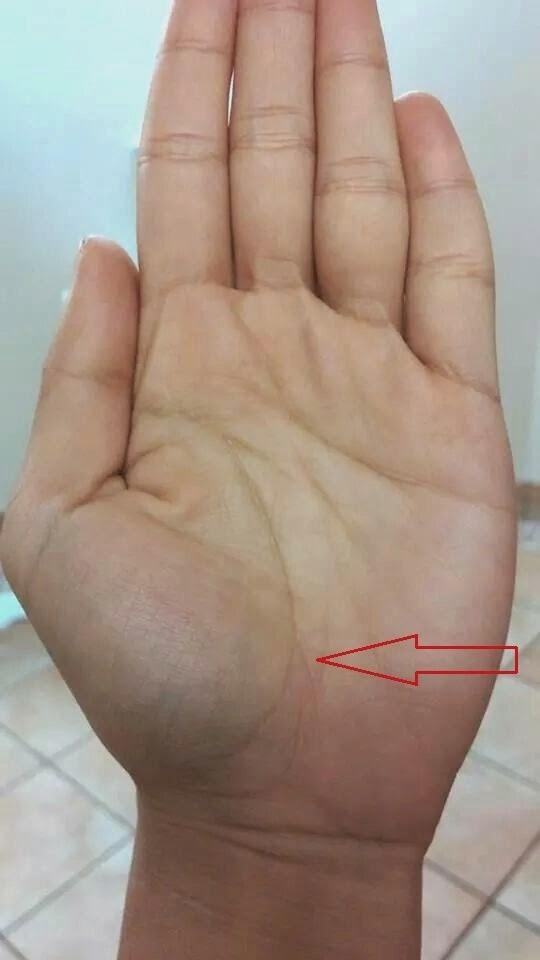 xem chỉ tay hình đuôi cá