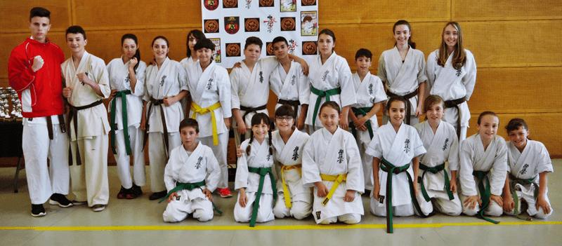 karatekas infantiles campeonato espana kyokushin