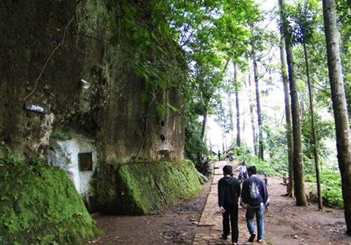 Taman Hutan Raya Juanda Lembang Bandung