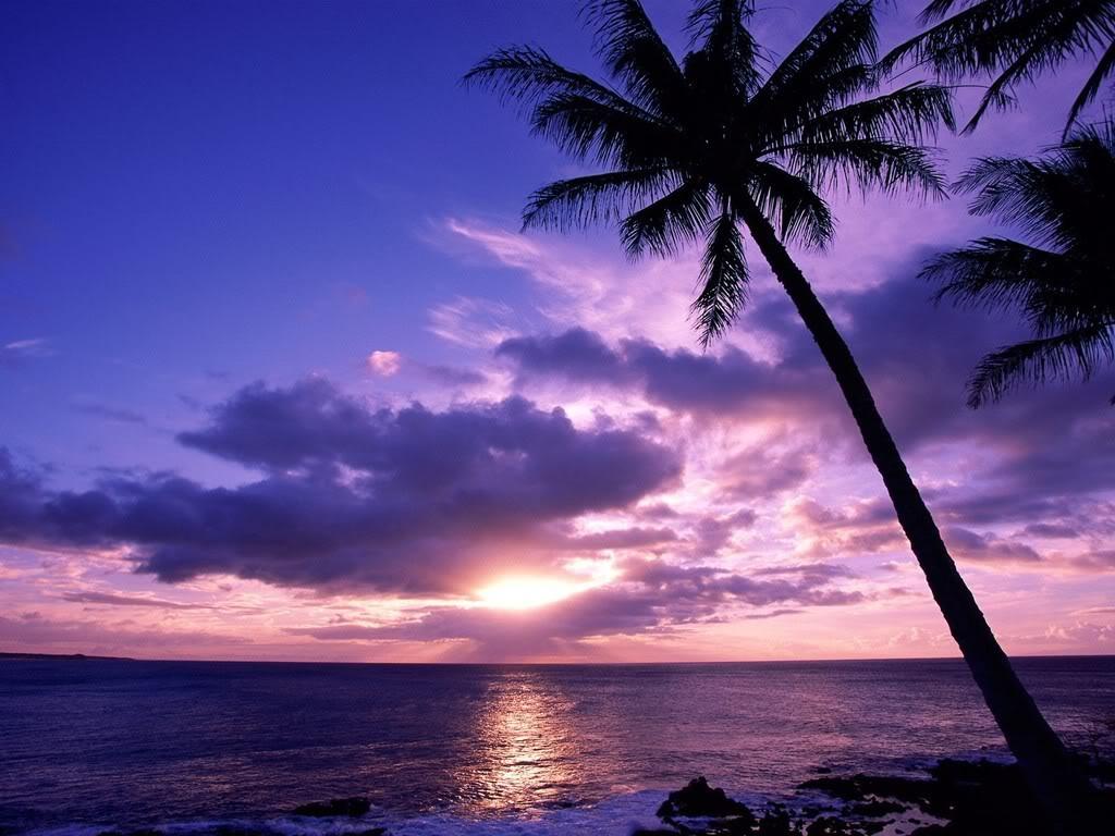 http://3.bp.blogspot.com/-HGL-_vOcmsY/UGGegBPfuBI/AAAAAAAAv7o/icTxn8H0uEI/s1600/Sunsets_0111133-748134.jpg
