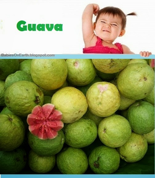 Baby Guava