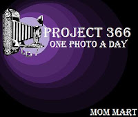 Project 366